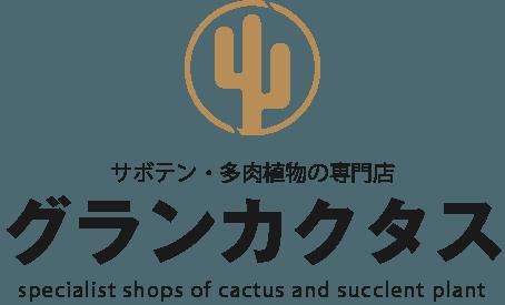 サボテン・多肉植物の専門店 グランカクタス
