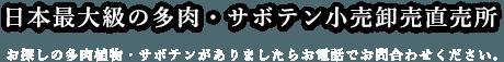 日本最大級の多肉・サボテン卸売り直販所